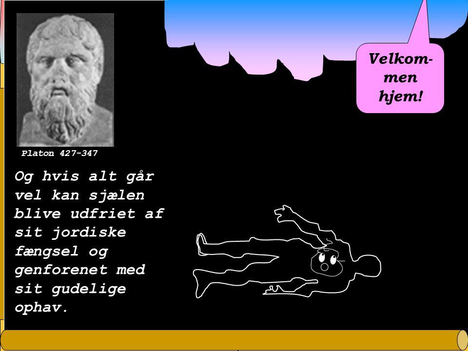 Platon 427-347 Velkom-men hjem.