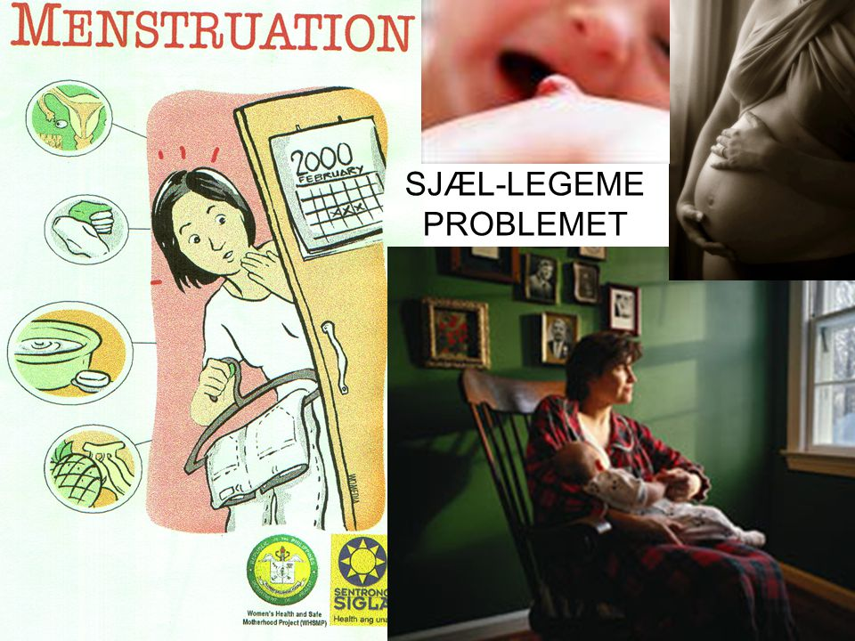 SJÆL-LEGEME PROBLEMET