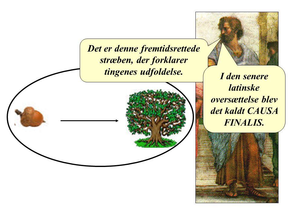 I den senere latinske oversættelse blev det kaldt CAUSA FINALIS.