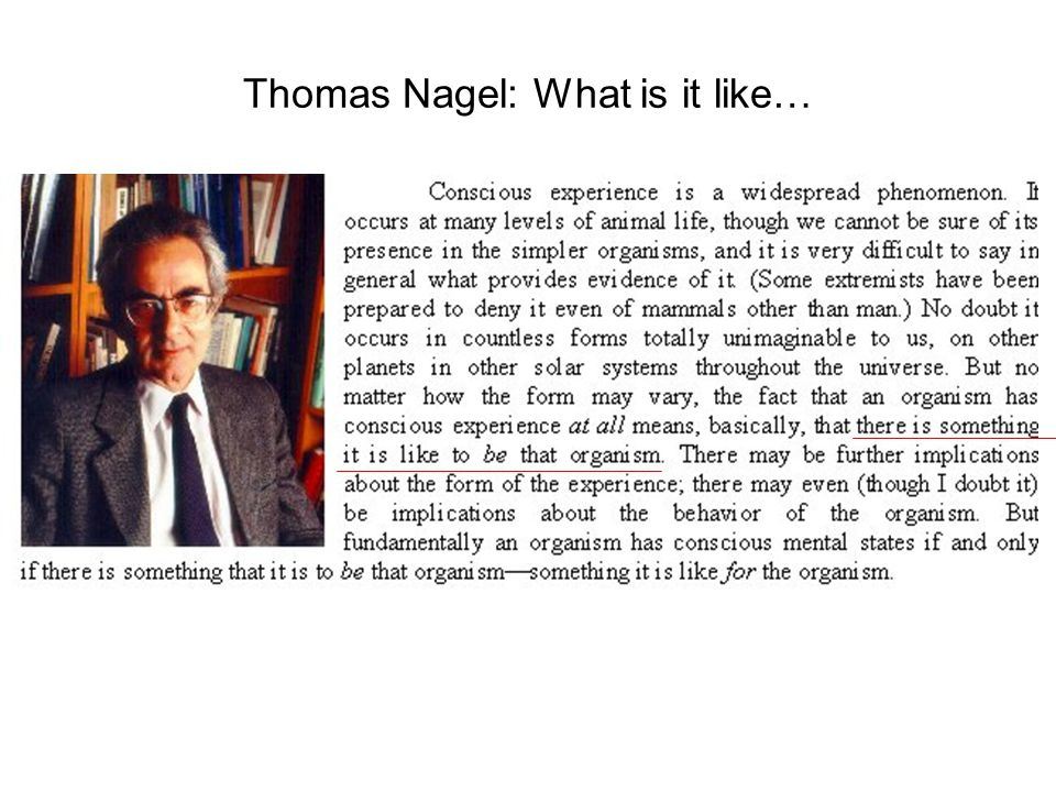 nagel what it is like to Thomas nagel (born 4 july 1937) is professor of philosophy and law at new  york  i don't want there to be a god i don't want the universe to be like that.