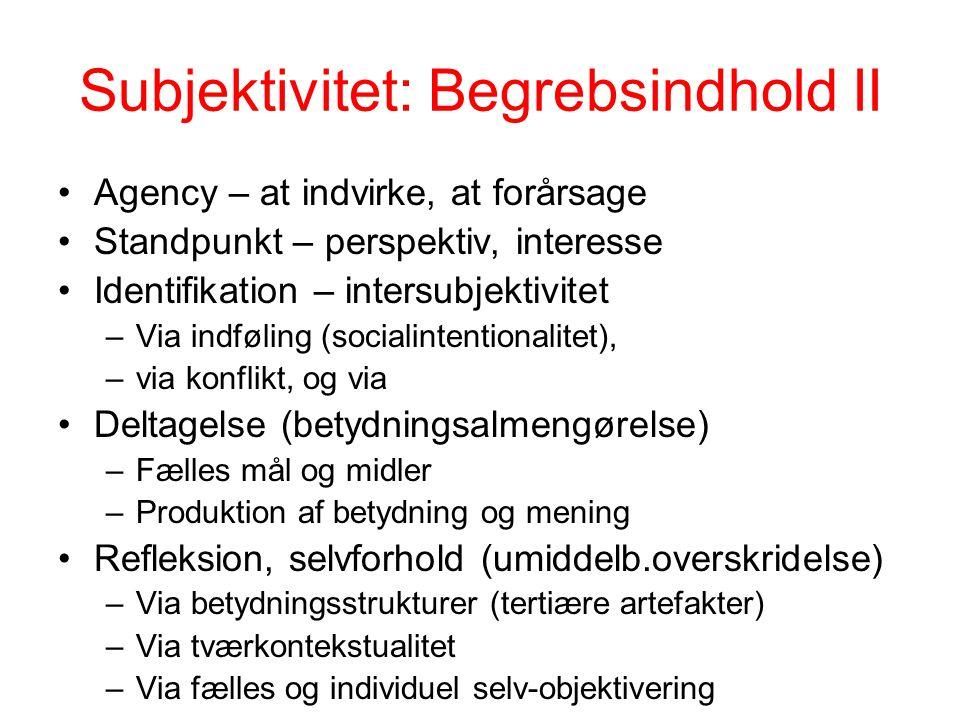 Subjektivitet: Begrebsindhold II