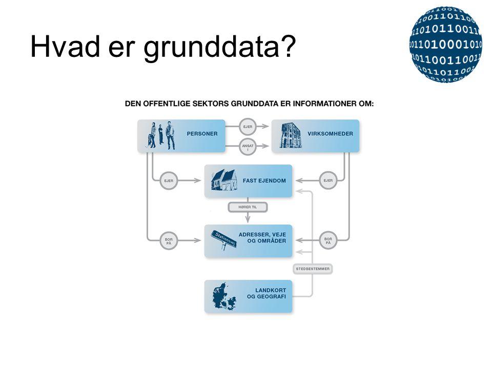 Hvad er grunddata