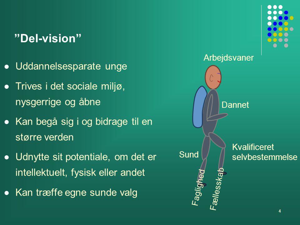 Del-vision Uddannelsesparate unge