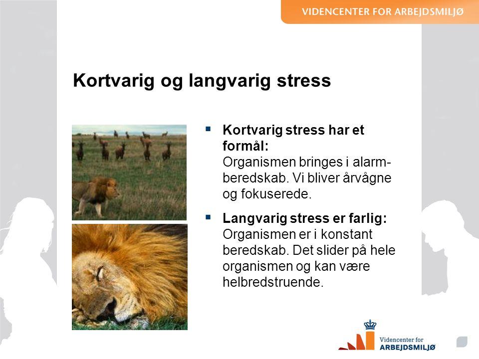 Kortvarig og langvarig stress