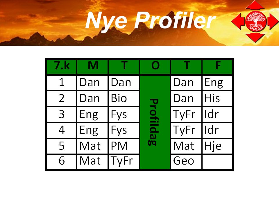 Nye Profiler