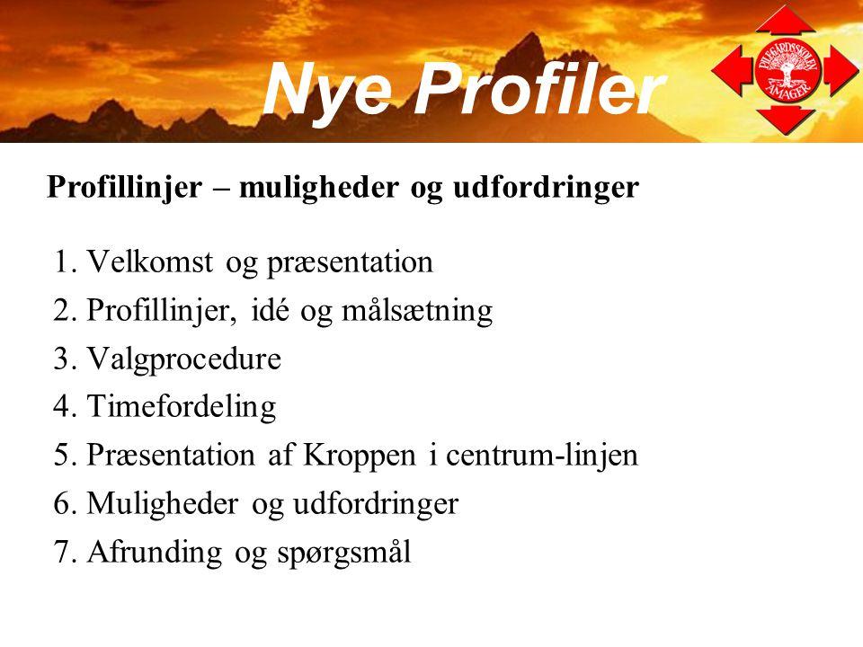 Nye Profiler Profillinjer – muligheder og udfordringer