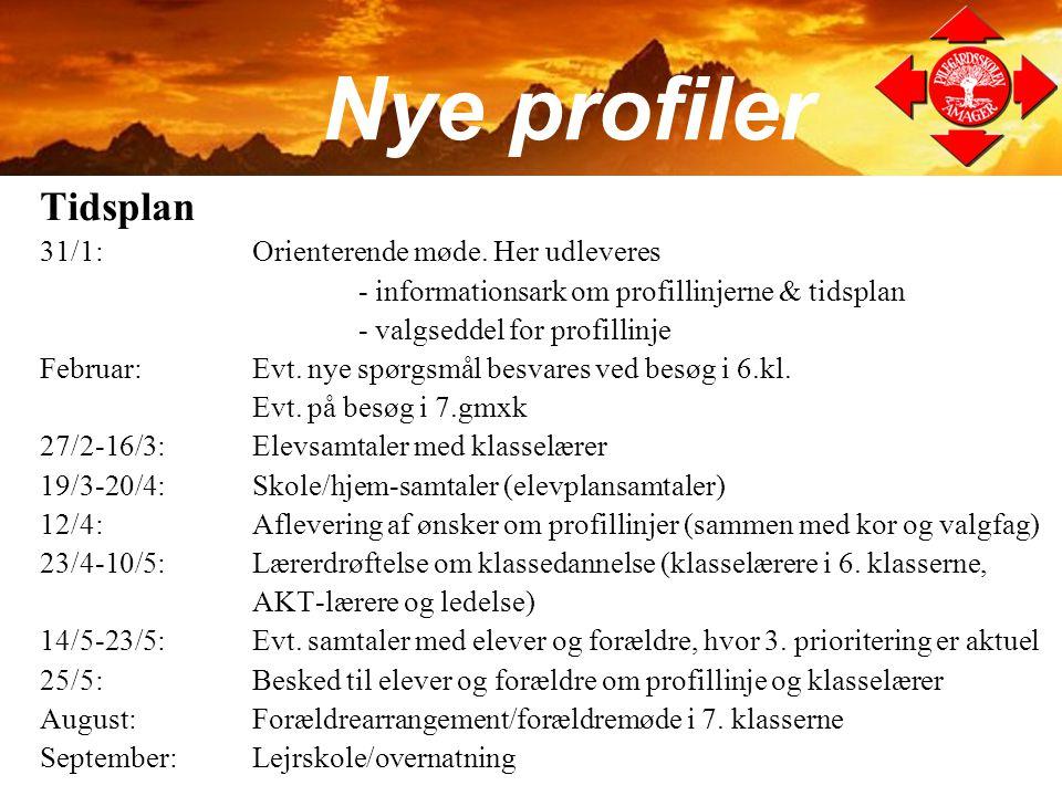 Nye profiler Tidsplan 31/1: Orienterende møde. Her udleveres