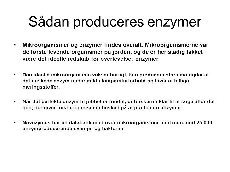 Sådan produceres enzymer