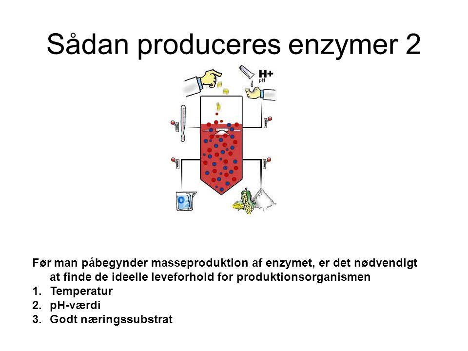 Sådan produceres enzymer 2