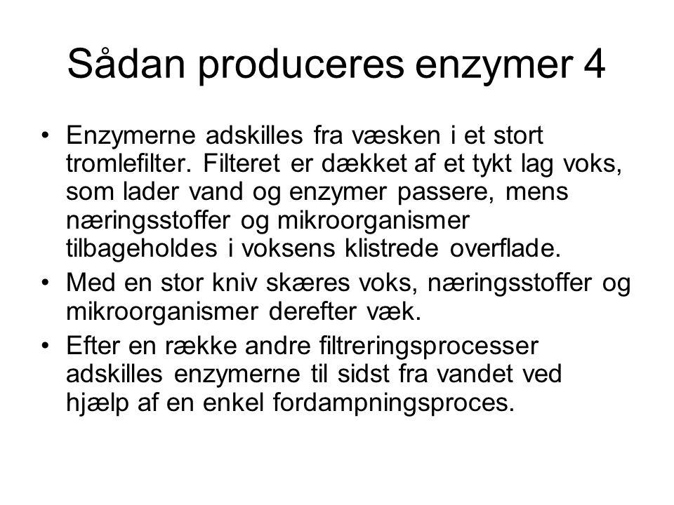 Sådan produceres enzymer 4