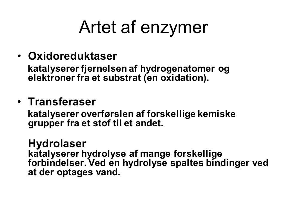 Artet af enzymer Oxidoreduktaser Transferaser