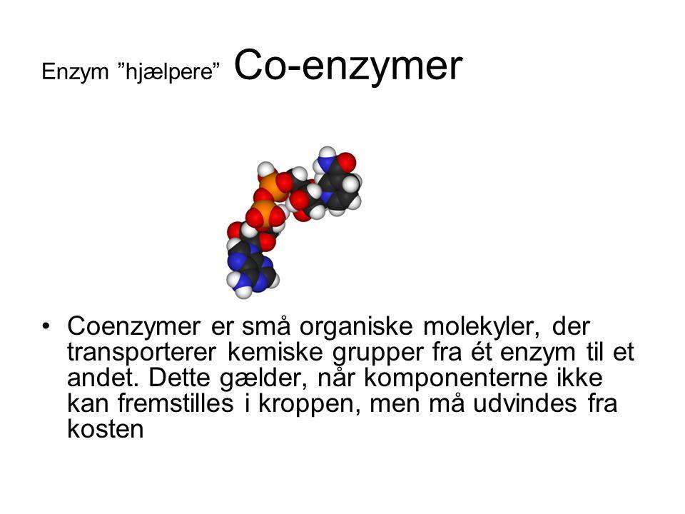 Enzym hjælpere Co-enzymer