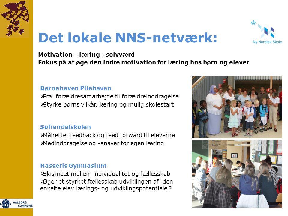 Det lokale NNS-netværk: