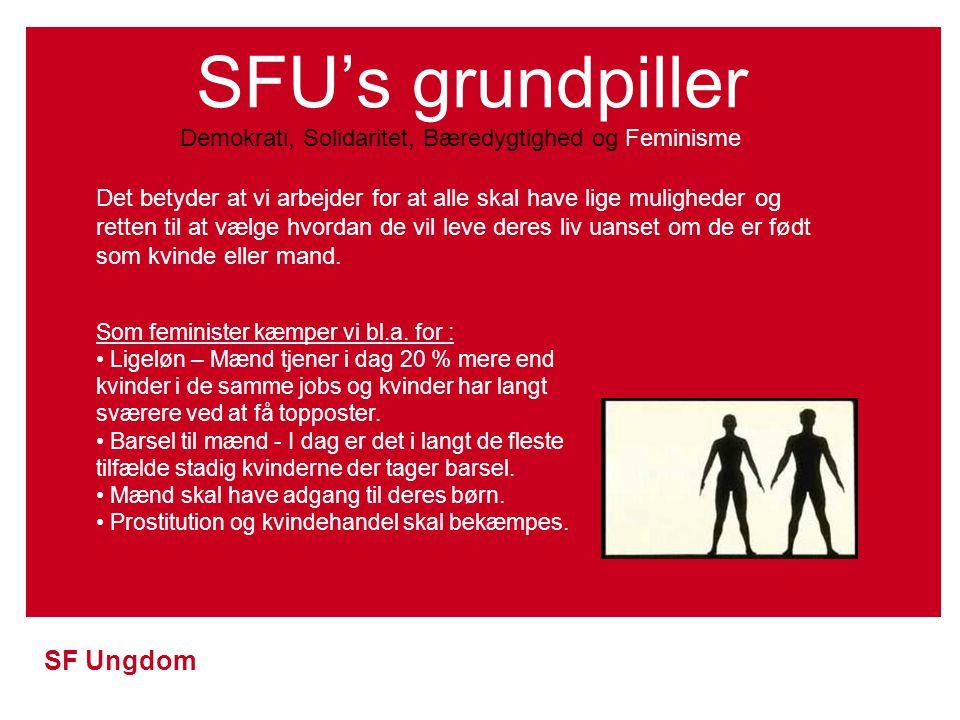 SFU's grundpiller Demokrati, Solidaritet, Bæredygtighed og Feminisme