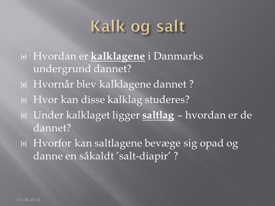 Kalk og salt Hvordan er kalklagene i Danmarks undergrund dannet
