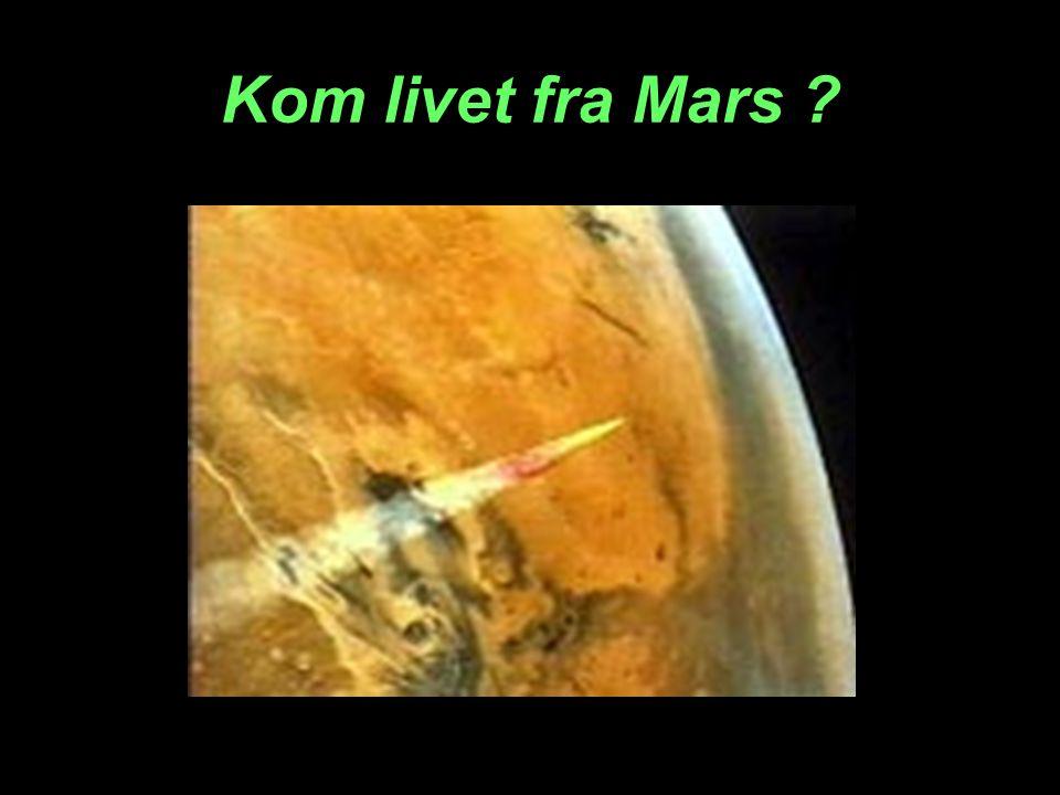 Kom livet fra Mars