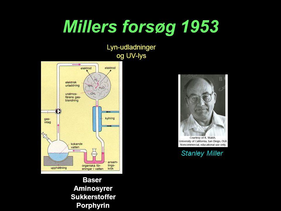 Millers forsøg 1953 Lyn-udladninger og UV-lys Stanley Miller Baser