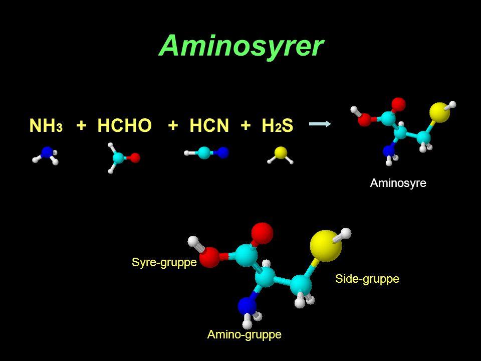 Aminosyrer NH3 + HCHO + HCN + H2S Aminosyre Syre-gruppe Side-gruppe
