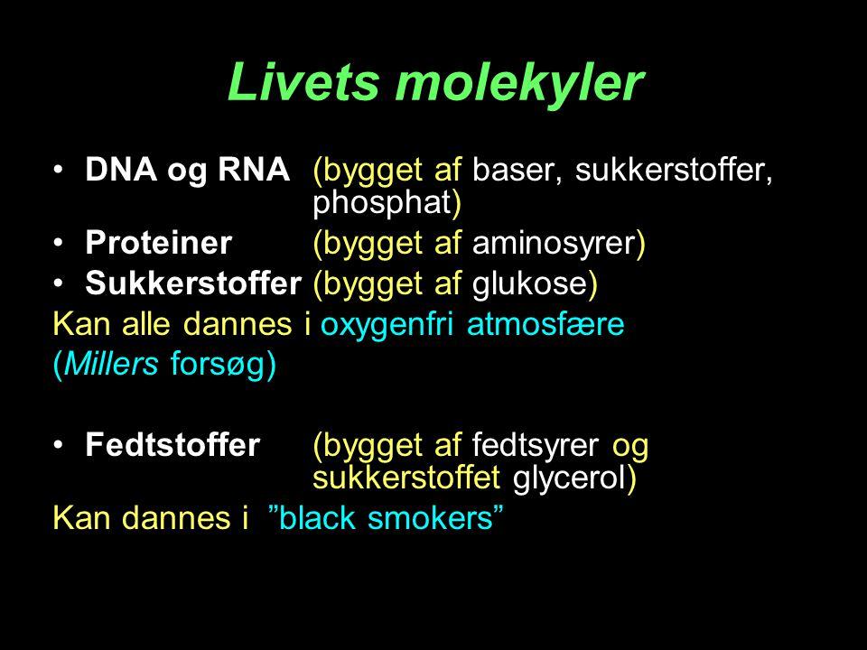 Livets molekyler DNA og RNA (bygget af baser, sukkerstoffer, phosphat)