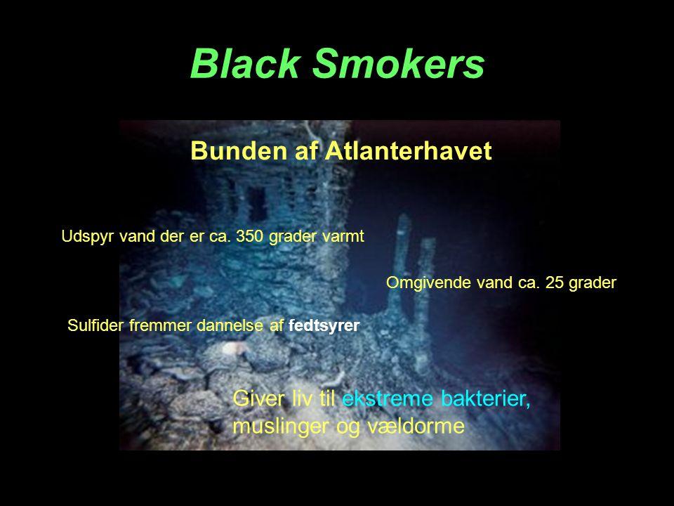 Black Smokers Bunden af Atlanterhavet