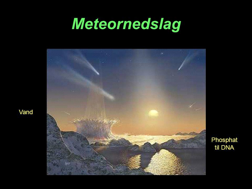 Meteornedslag Vand Phosphat til DNA