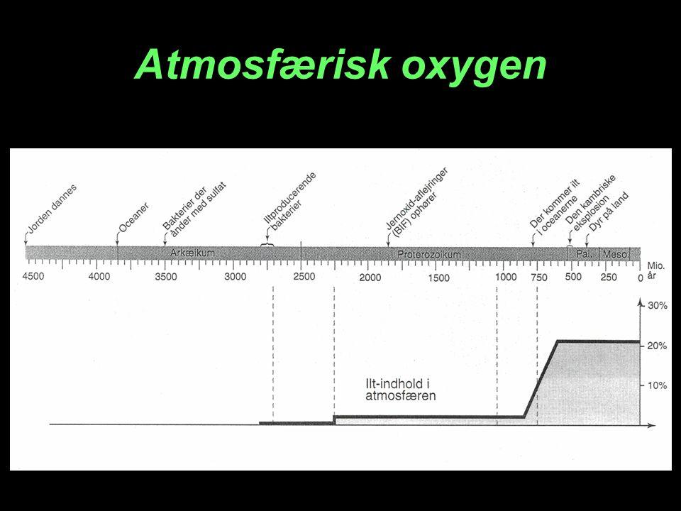 Atmosfærisk oxygen