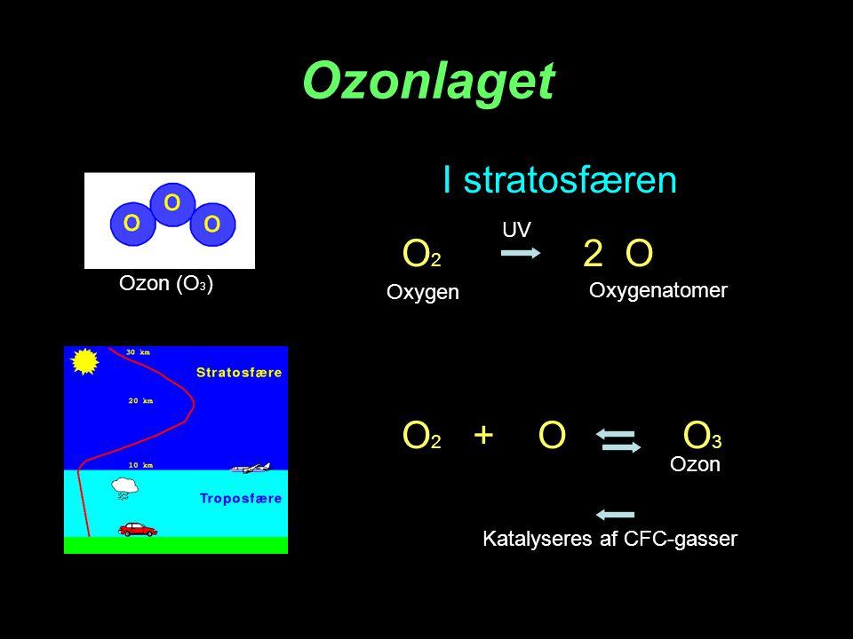 Ozonlaget I stratosfæren O2 2 O O2 + O O3 UV Ozon (O3) Oxygen