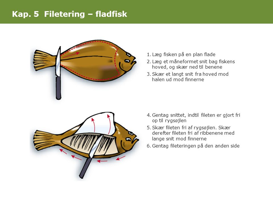 Kap. 5 Filetering – fladfisk
