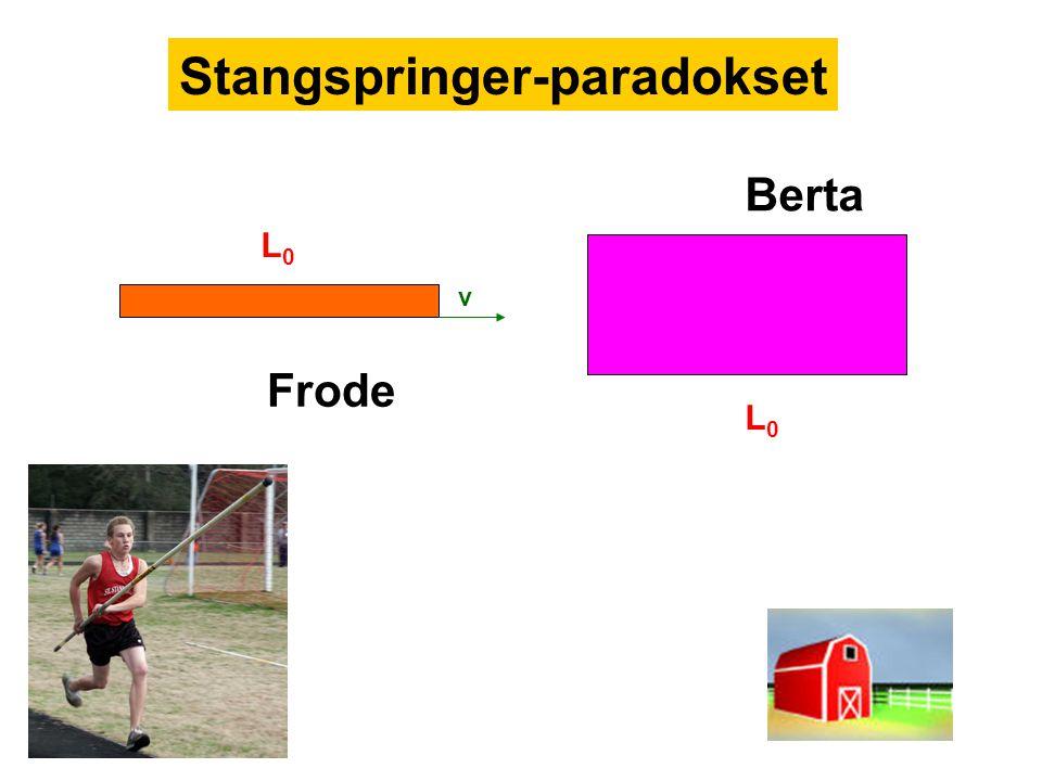 Stangspringer-paradokset