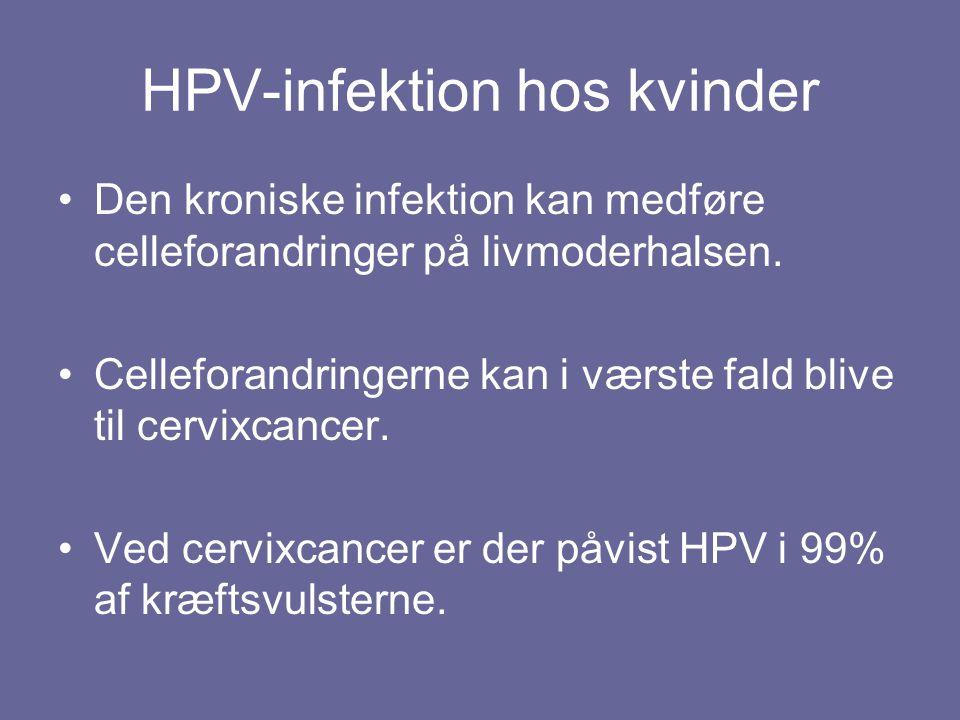 HPV-infektion hos kvinder