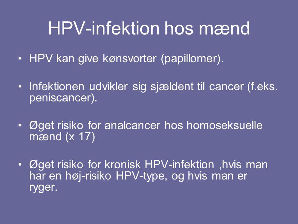 HPV-infektion hos mænd