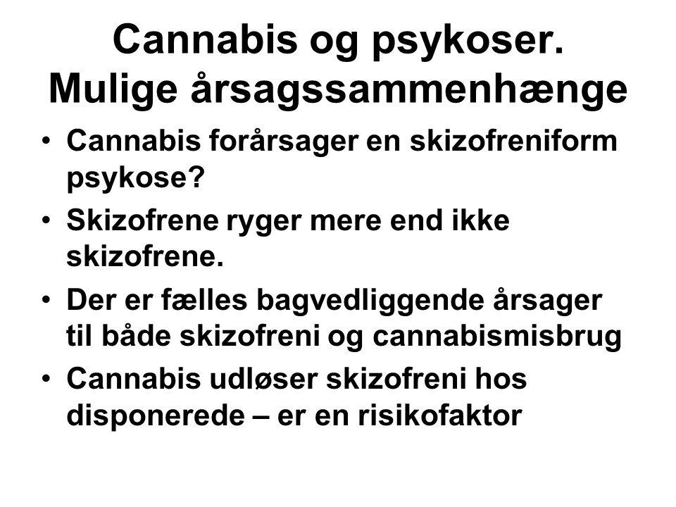 Cannabis og psykoser. Mulige årsagssammenhænge