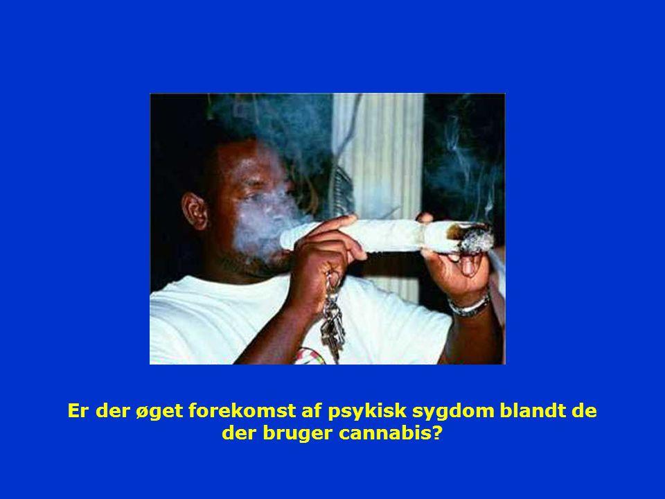 Er der øget forekomst af psykisk sygdom blandt de der bruger cannabis