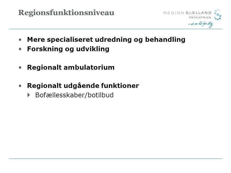 Regionsfunktionsniveau