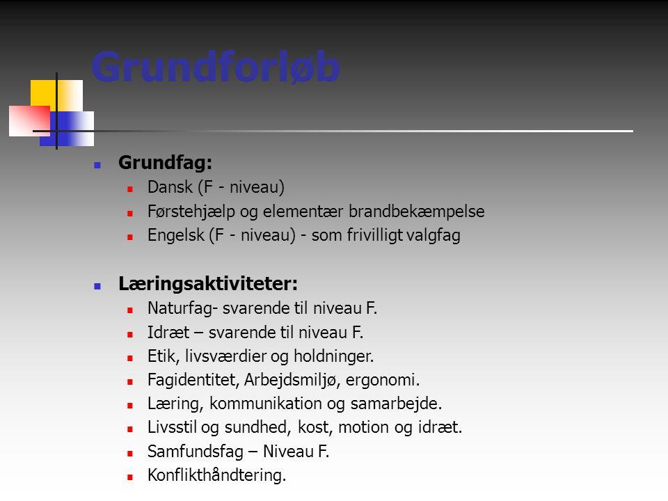 Grundforløb Grundfag: Læringsaktiviteter: Dansk (F - niveau)