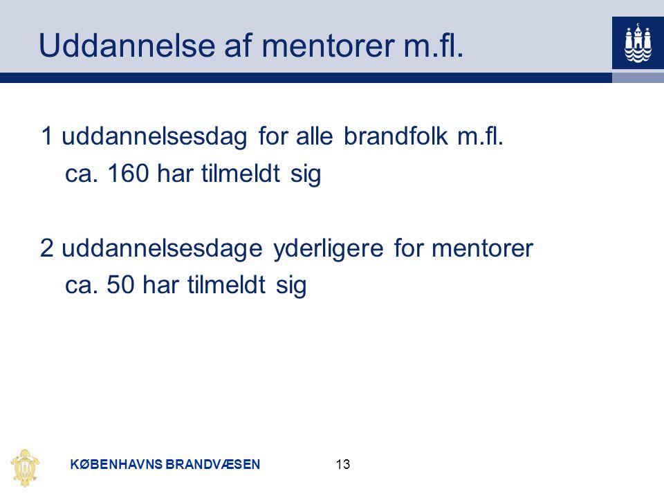 Uddannelse af mentorer m.fl.