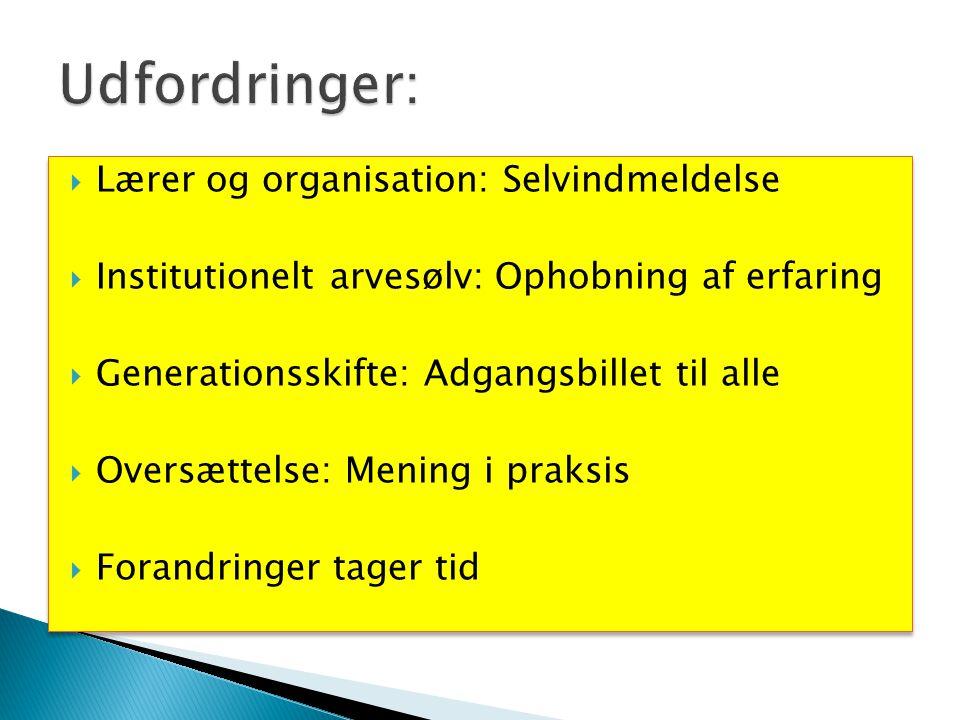 Udfordringer: Lærer og organisation: Selvindmeldelse