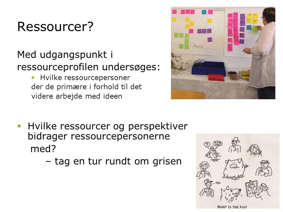 Ressourcer Med udgangspunkt i ressourceprofilen undersøges: