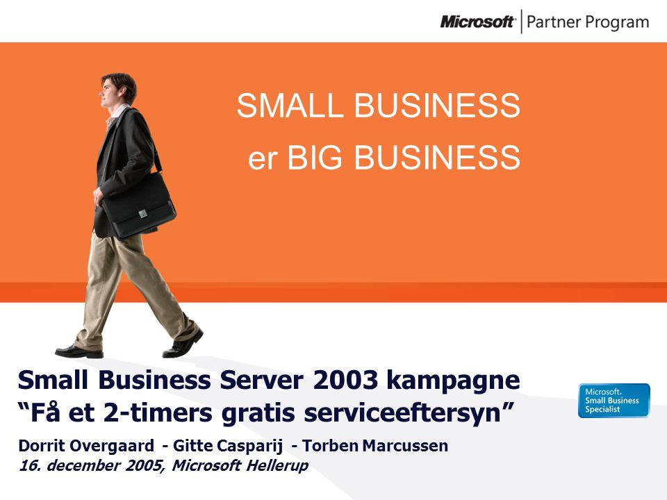 Small Business Server 2003 kampagne Få et 2-timers gratis serviceeftersyn