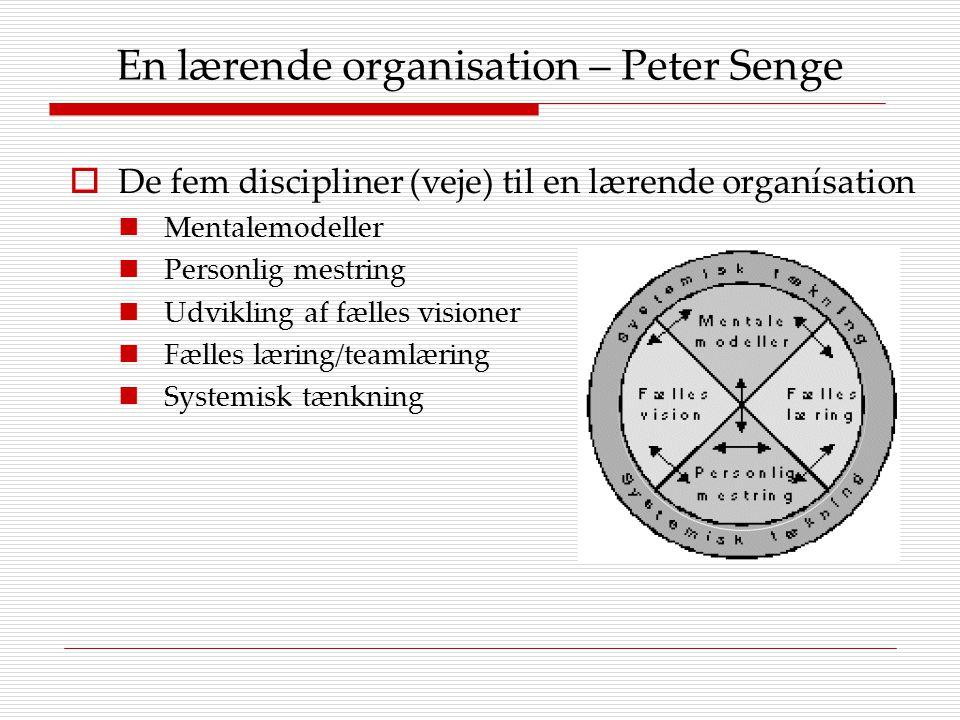 En lærende organisation – Peter Senge