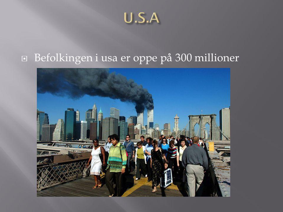 U.S.A Befolkingen i usa er oppe på 300 millioner