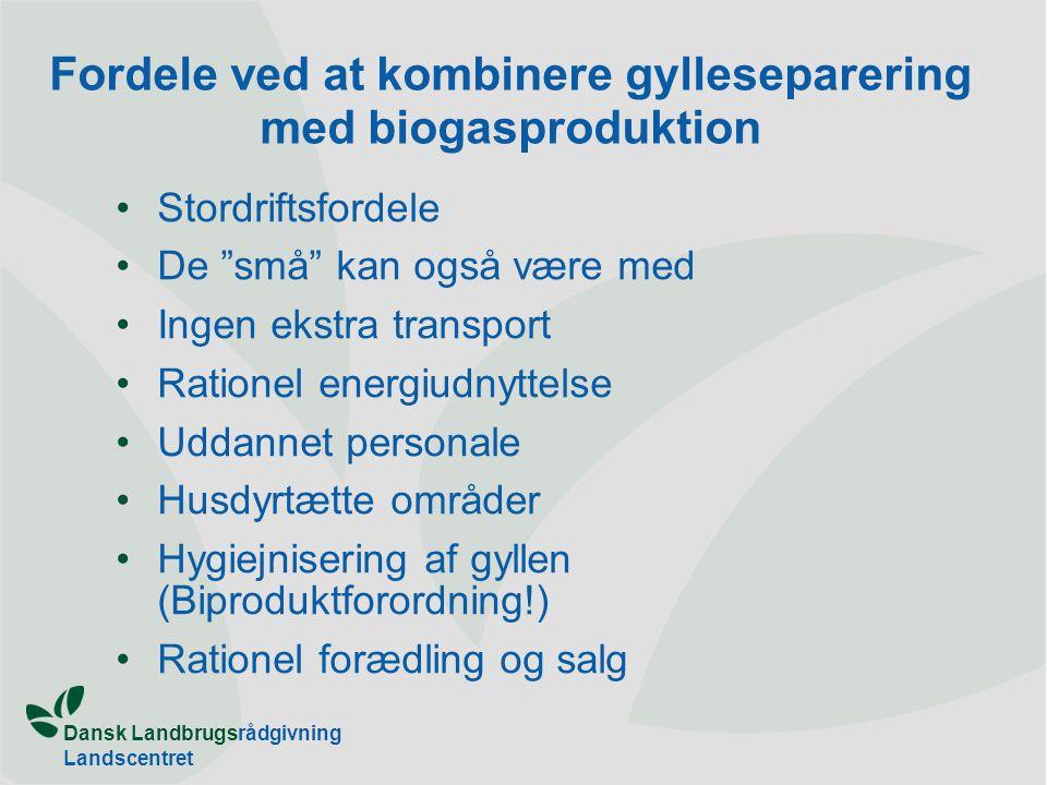 Fordele ved at kombinere gylleseparering med biogasproduktion