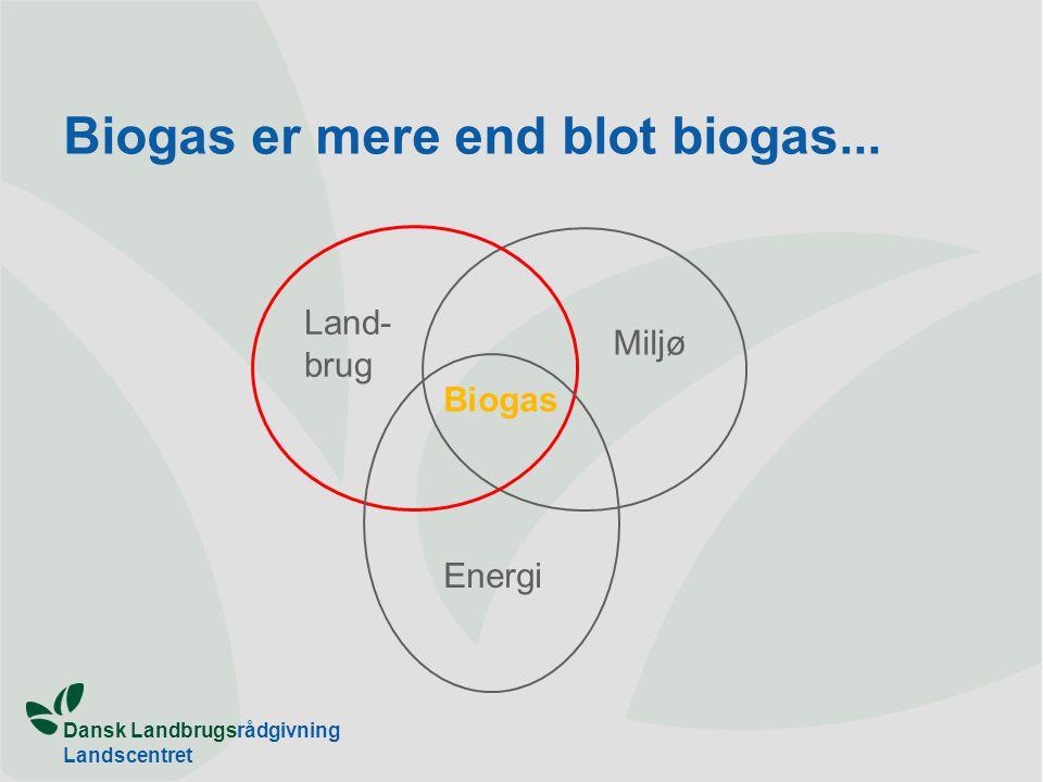 Biogas er mere end blot biogas...