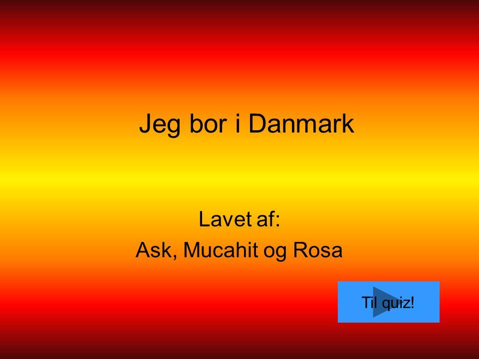 Lavet af: Ask, Mucahit og Rosa