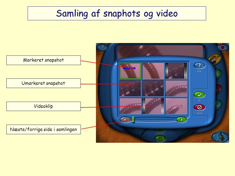 Samling af snaphots og video