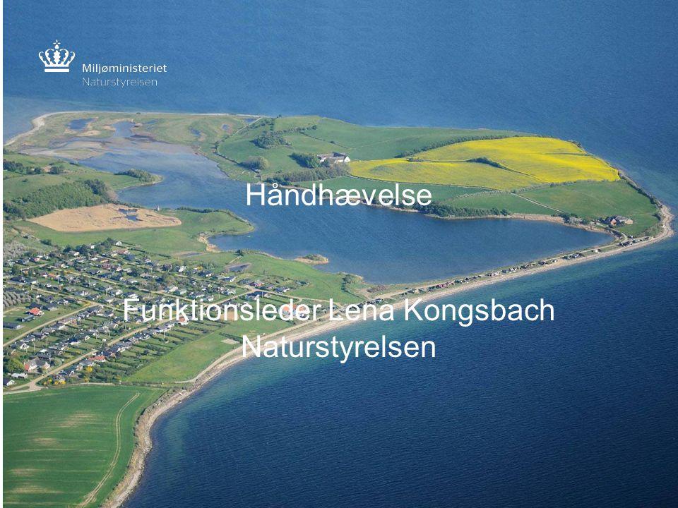 Funktionsleder Lena Kongsbach Naturstyrelsen