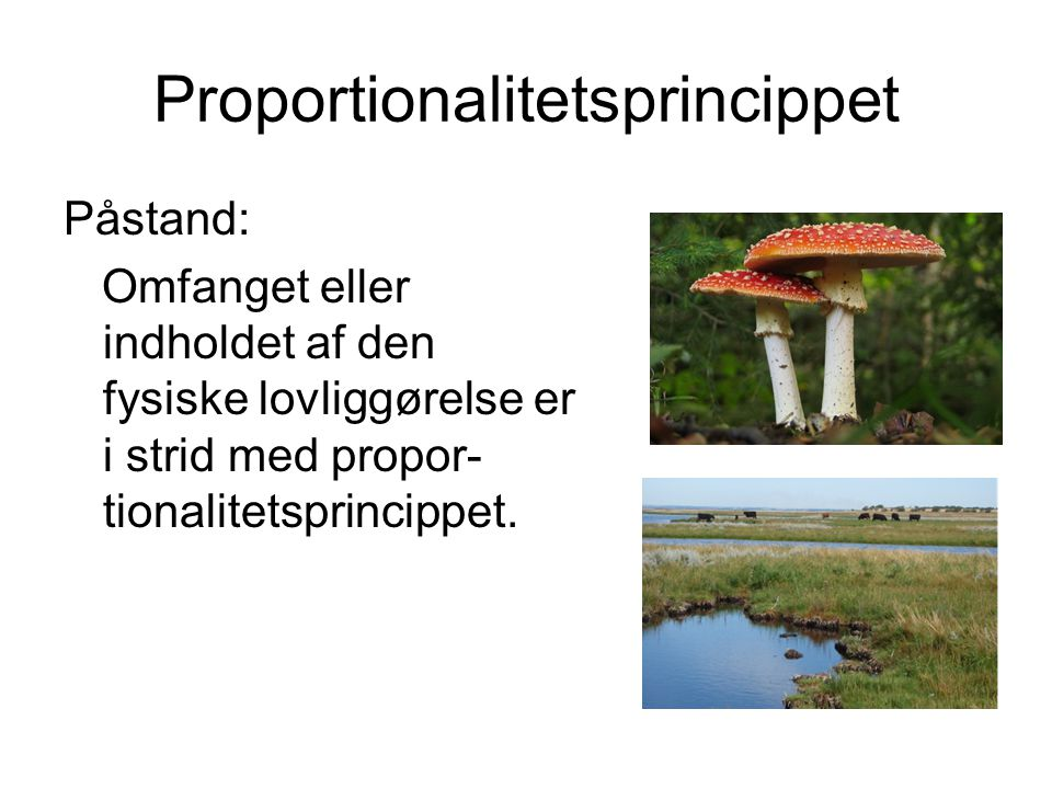 Proportionalitetsprincippet