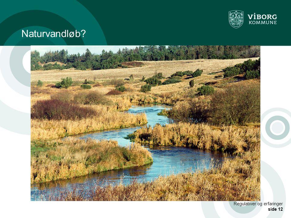 Naturvandløb Regulativer og erfaringer side 12