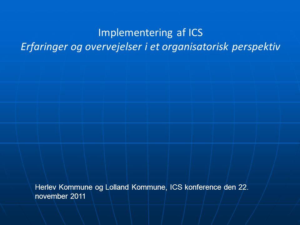 Erfaringer og overvejelser i et organisatorisk perspektiv