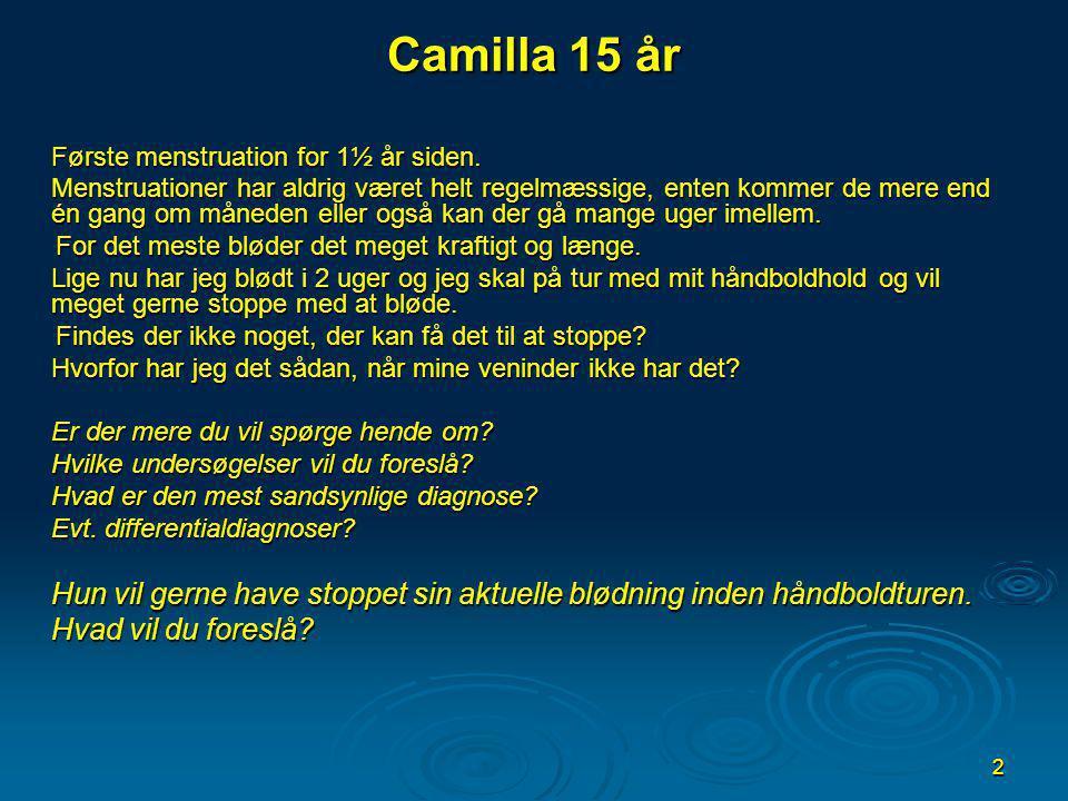 Camilla 15 år Hvad vil du foreslå
